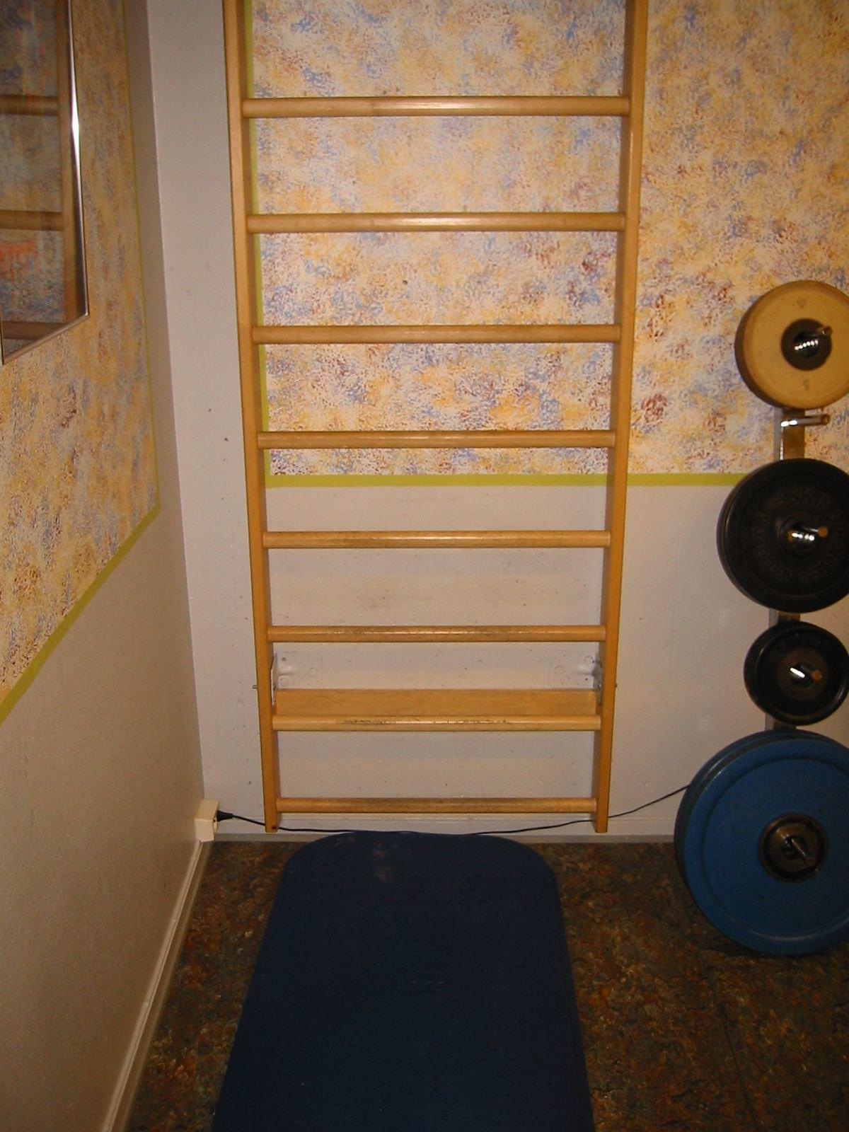 Hier handelt es sich um eine Sprossenwand die zuhause angebracht werden kann.